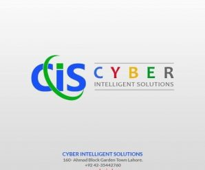 Cyber Intelligent Solution – Food Delivery app